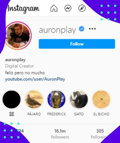 Instagram Influencer's Profile